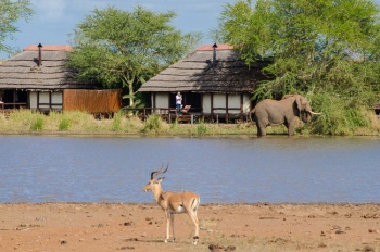 Shishangeni by BON Hotels - Kruger National Park (2 Nights)
