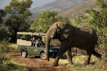 Kwa Maritane Bush Lodge - Pilanesberg National Park (2 Nights