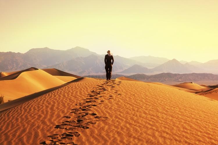 Namibia - Desert