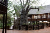 4* Cresta Mowana Safari Resort & Spa - Botswana - 3 Nights