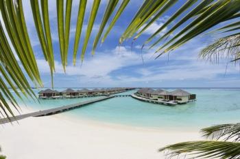 5* Paradise Island Resort - Maldives 7 Nights