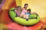 Dubai Parks - Three Parks Combo - Unlimited Access Ticket