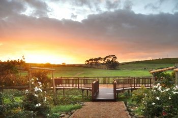 Endless Vineyards Boutique Lodge - Near Hermanus (2 Nights)