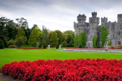 Family Tour of Ireland - Ireland (8 Days / 7 Nights)