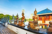 Sri Lanka Tour - (7 Nights)