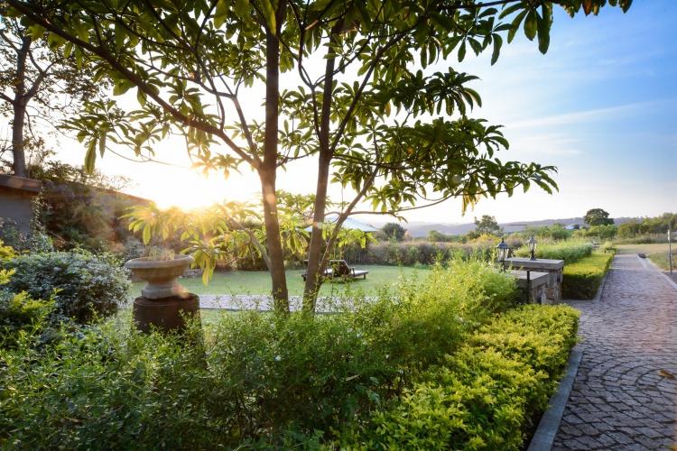 Belgrace - Gardens