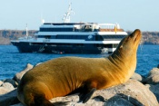 Celebrity Xpedition - Galapagos Islands Cruise (7 Nights)