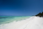 **December Deals** 4* Karafuu Beach Resort - Zanzibar 7 Nights