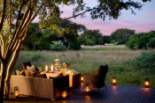 &Beyond Phinda Forest Lodge - Near Hluhluwe (2 Nights)