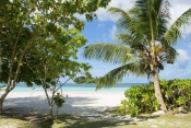 Cote D Or Chalets (2 sleeper bungalow)  - Seychelles Selfcatering - (7 Nights)