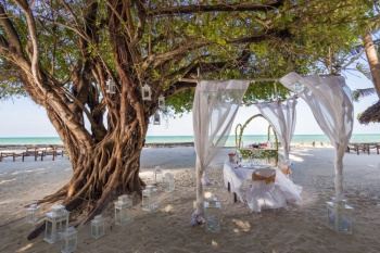(September School Holidays) 4* Diamonds Mapenzi Beach - Zanzibar (5 Nights)