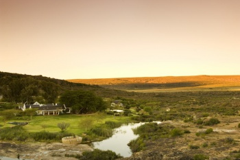 (Honeymoon) 5* Bushmans Kloof Wilderness Reserve & Wellness Retreat - (3 Nights)